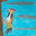 WOODPECKER - BIRD
