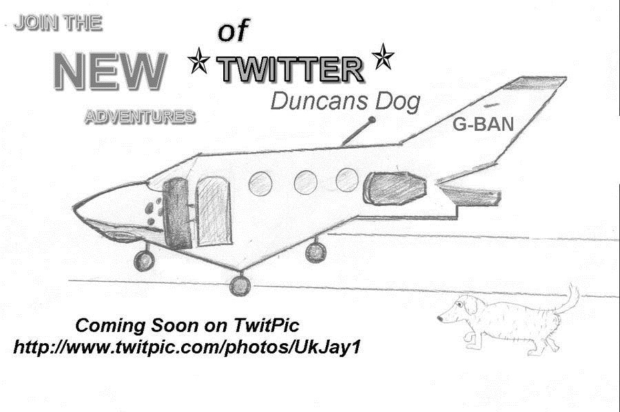 The New Adventures Of Twitter