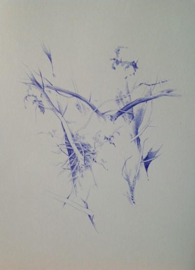 Winters Tree 2