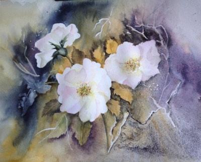 Evening Roses