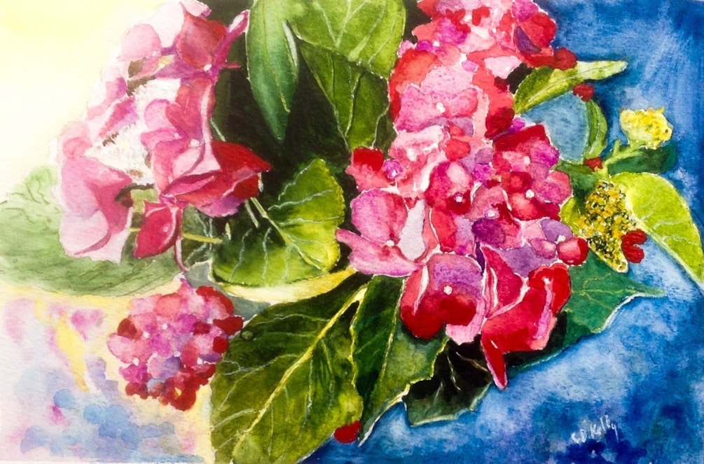 Hydrangea from the garden