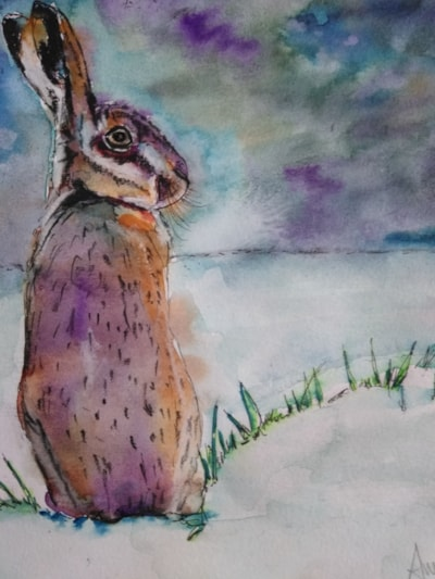 A hare or a rabbit.