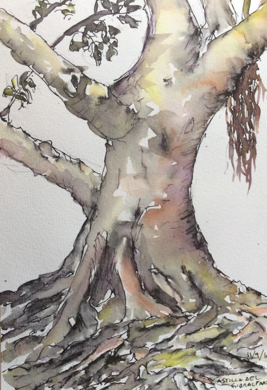 Tree at Castillo de Gibralfaro, Malaga (sketch) 2016