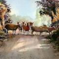Crossroads at Exmoor