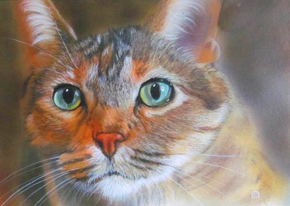 Technicolor Cat
