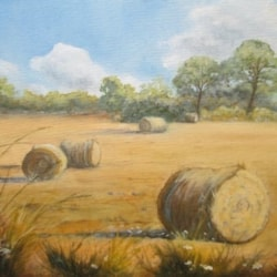 Hay Bales at Turvey