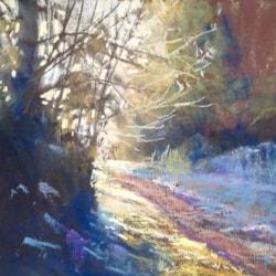 Latchbrook Leat on a frosty morning 3
