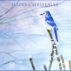 Happy Christmas to all at Leisure Painter, thank you for a great year.