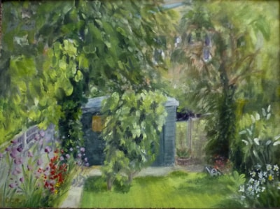 Back garden in Summer