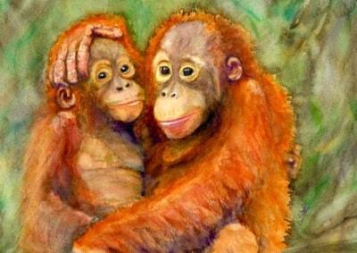 Orang-utan and baby