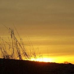 ANOTHER GLOURIOUS SUN-UP.