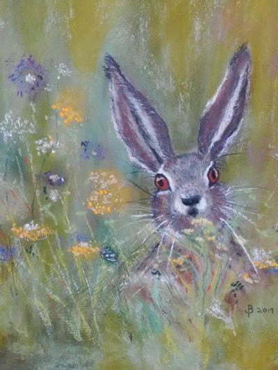 'Hidden in the long grass'!