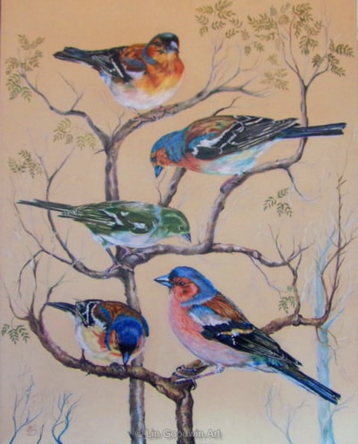 """Finches'Finches' On archival mountboard 20"""" x 16"""" Pablo and Polychromos pencils June 2015"""