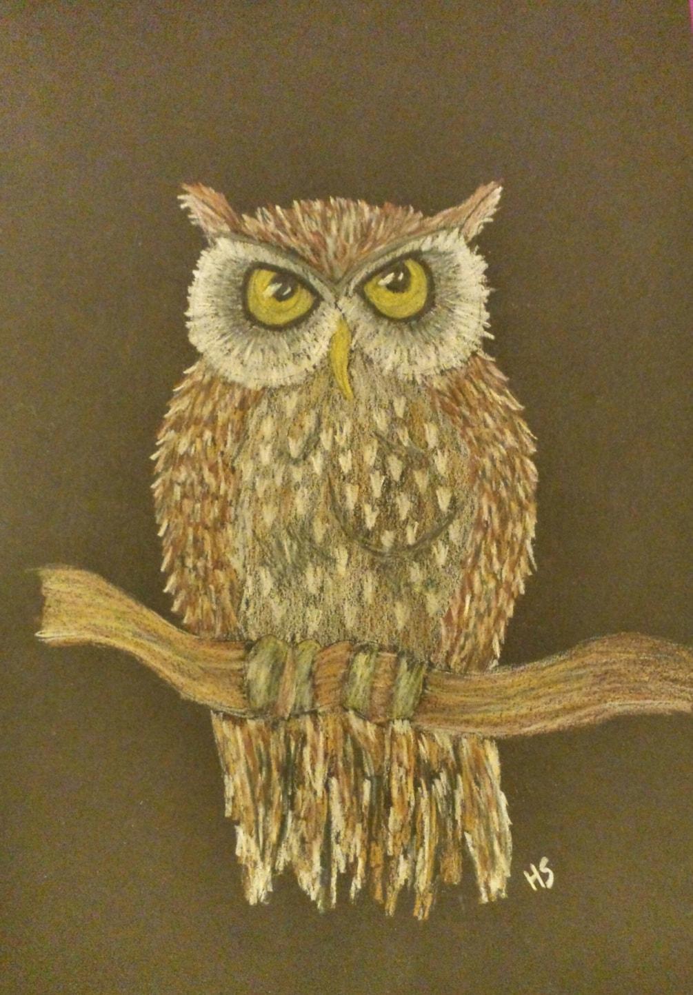 Owl on black art card