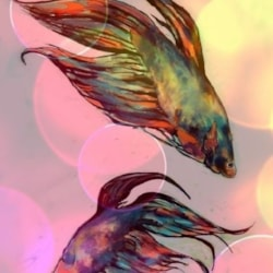 Fishes No.3