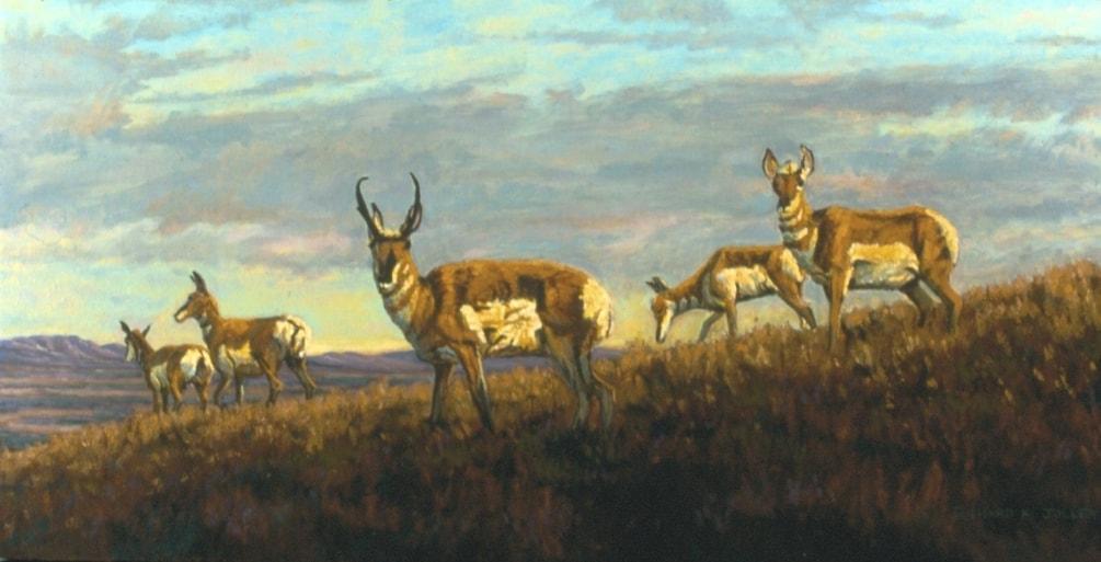 Prairie Nomads