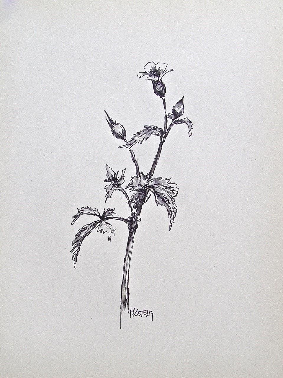 Little-robin sketch