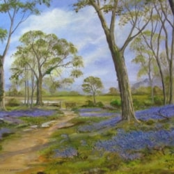 At the Edge of Bluebell Wood