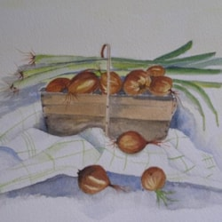 Onions and Leeks