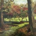 Autumn at Batsford Arboretum