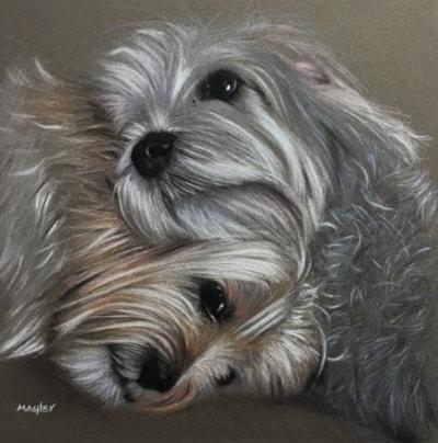 Dudley & Bronte