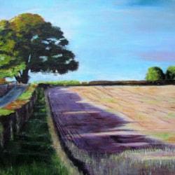 Dryton Oak