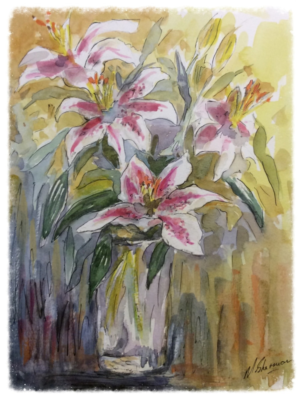 My Favourite Lilies