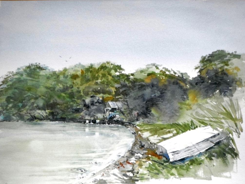 Gt. Barrier Island, Hauraki Gulf