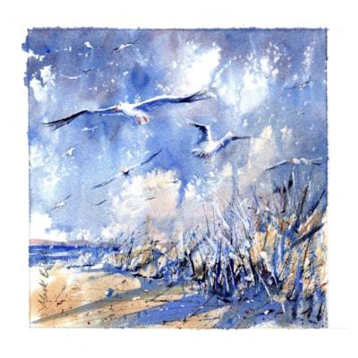 Seagulls at Bembridge point