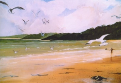 The birds at St. Ives