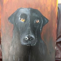 Portrait of Yagi dog