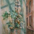 Large pot plant