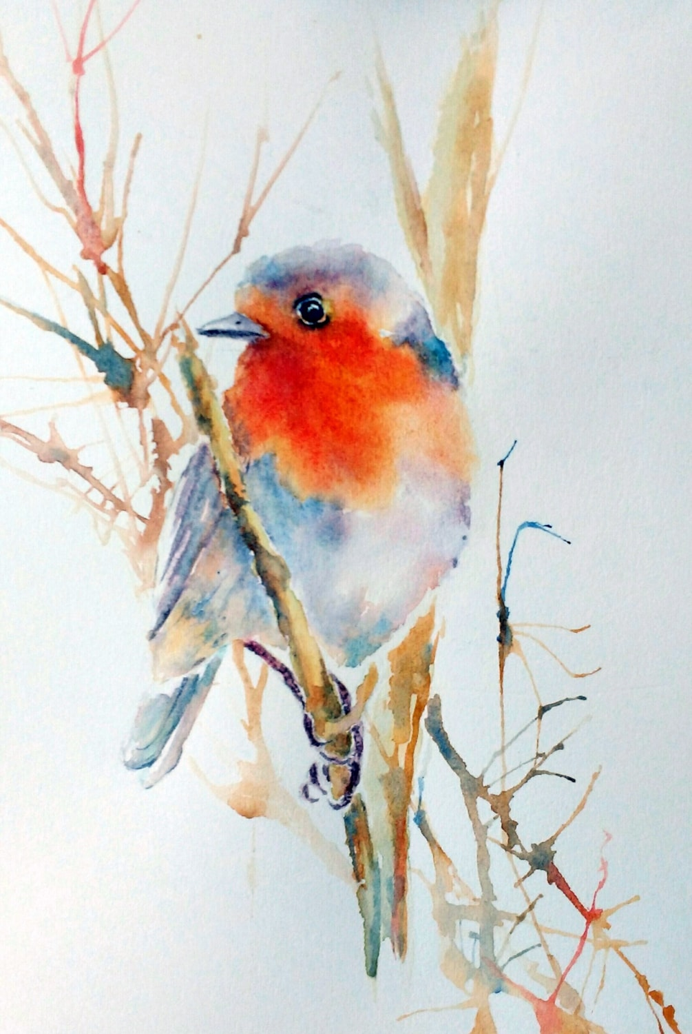 Robins are not just for Christmas