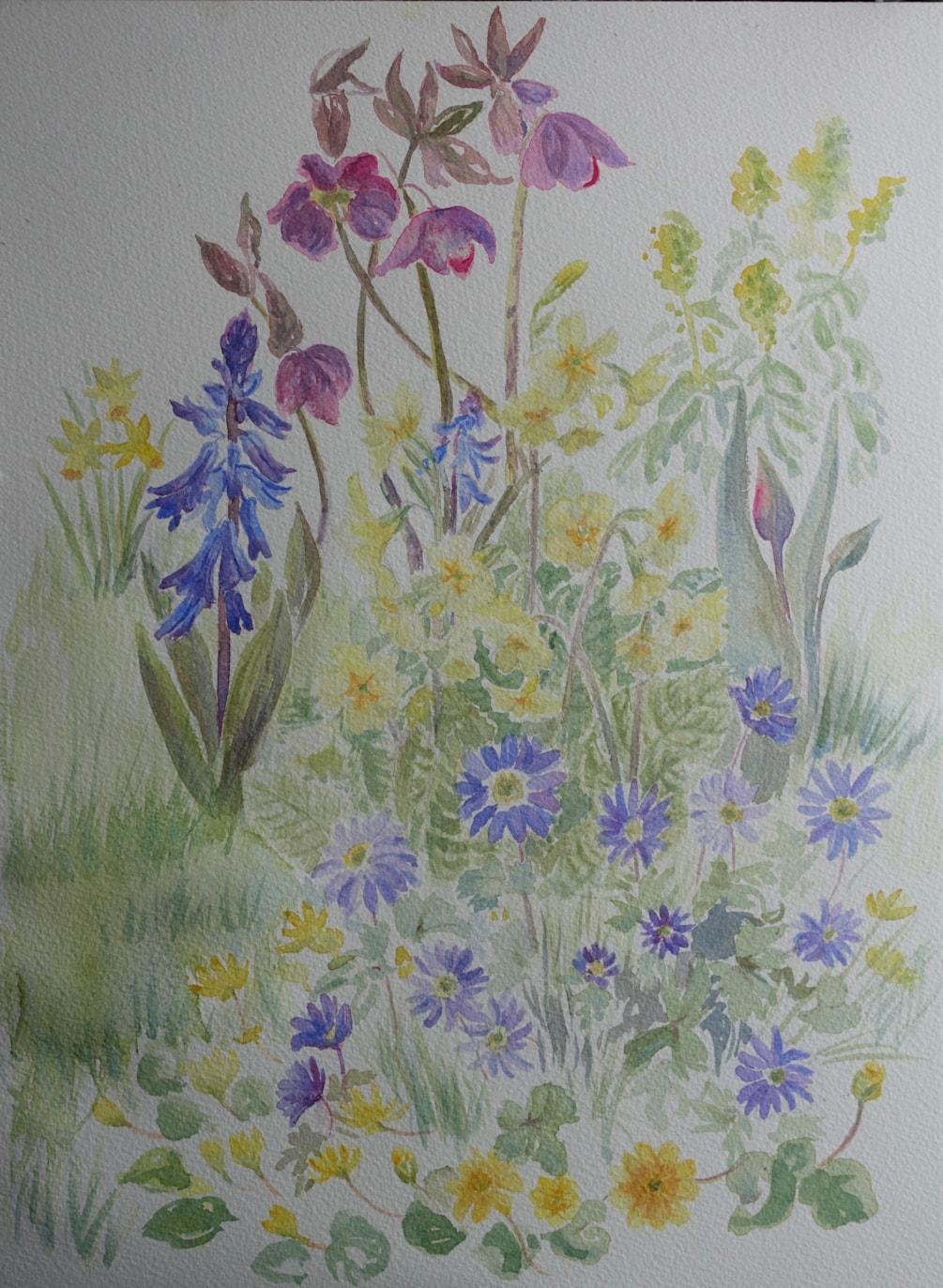 Splodging in the garden