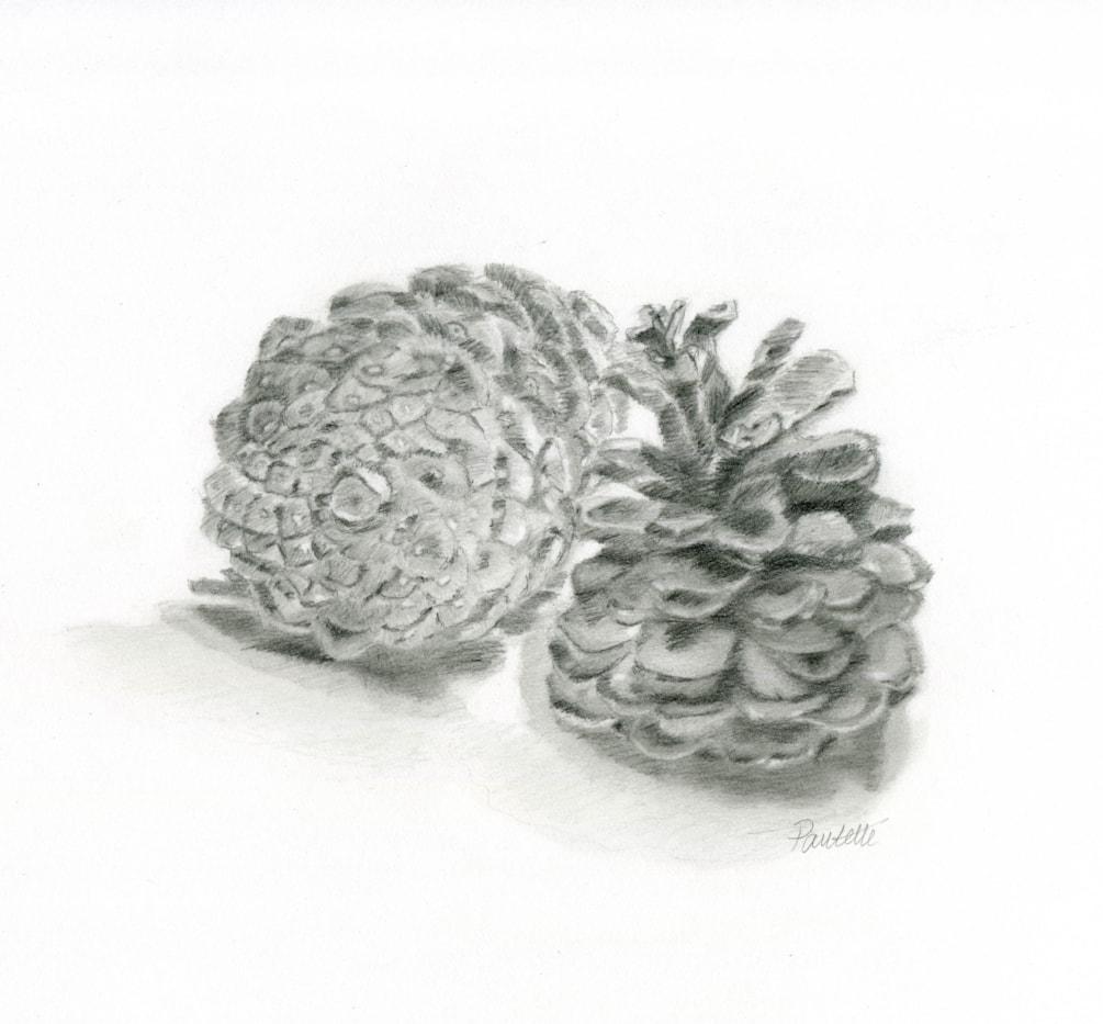 Winter Cones