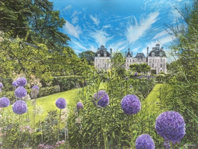 French Chateau, High Summer