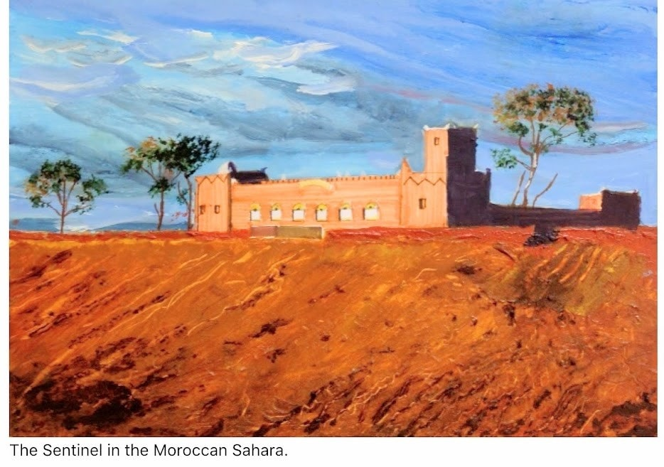 The Sentinel in the Moroccan Sub Sahara