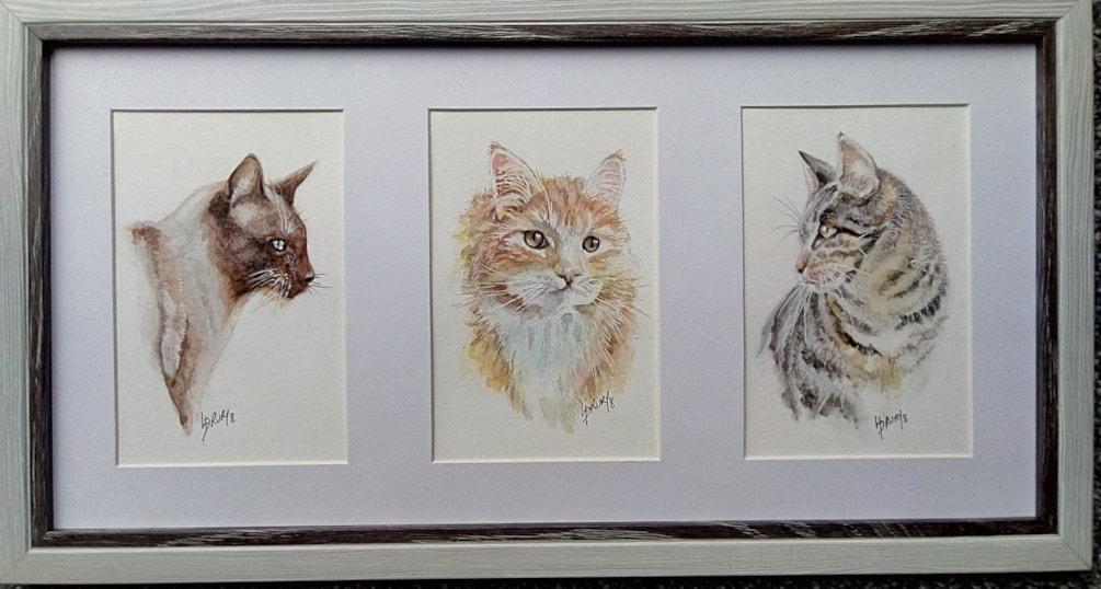 Framed trio of cats