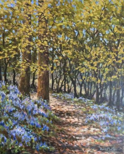 Bluebells at Pentillie