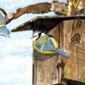 "Birdhouse ""Home"""