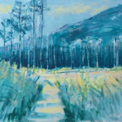 Path to the Pine Forest. [Glen Clova Series]