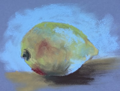 Small Lemon Study