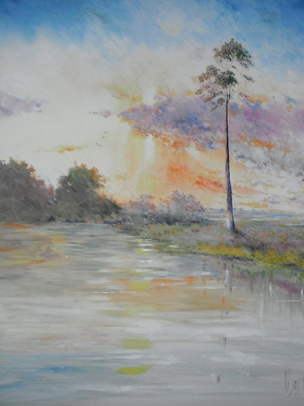 Upper Turanga  Creek
