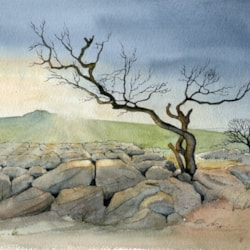 Dales Tree Sketch