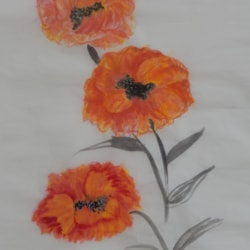 EXTRA LARGE POPPIES