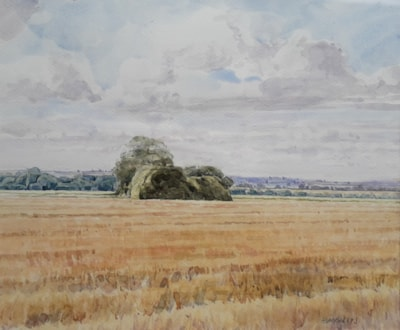 Copse in stubble field, Lincs