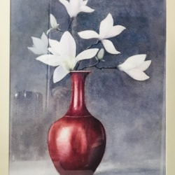 Magnolia in red Chinese vase