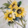 Scruffy sunflowers :)