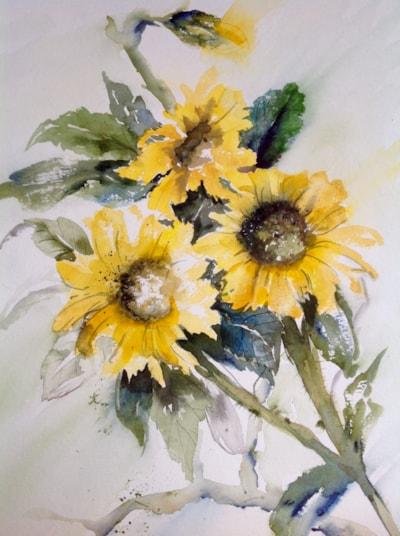 Scruffy sunflowers :)