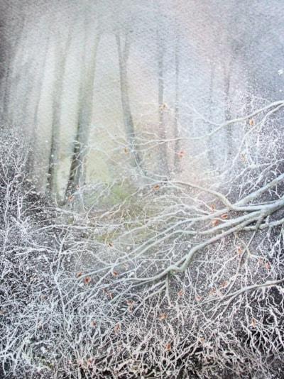 Frosthole